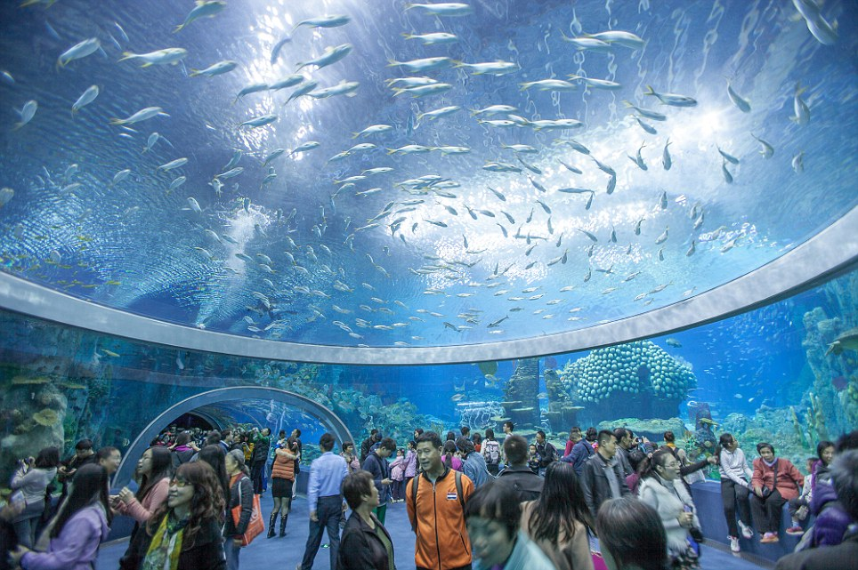 Chimelong Ocean Kingdom - Hengqin, China