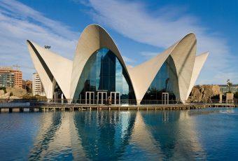 L'Oceanografic - Valencia, Spain.