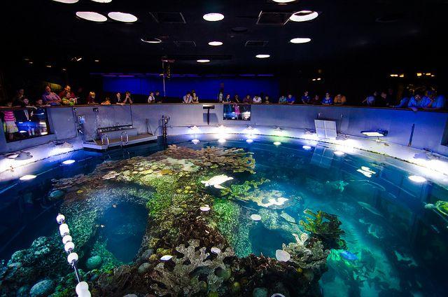 New England Aquarium - Boston, Massachusetts