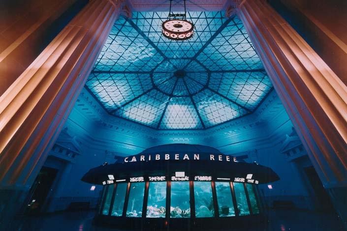 Shedd Aquarium - Chicago, Illinois