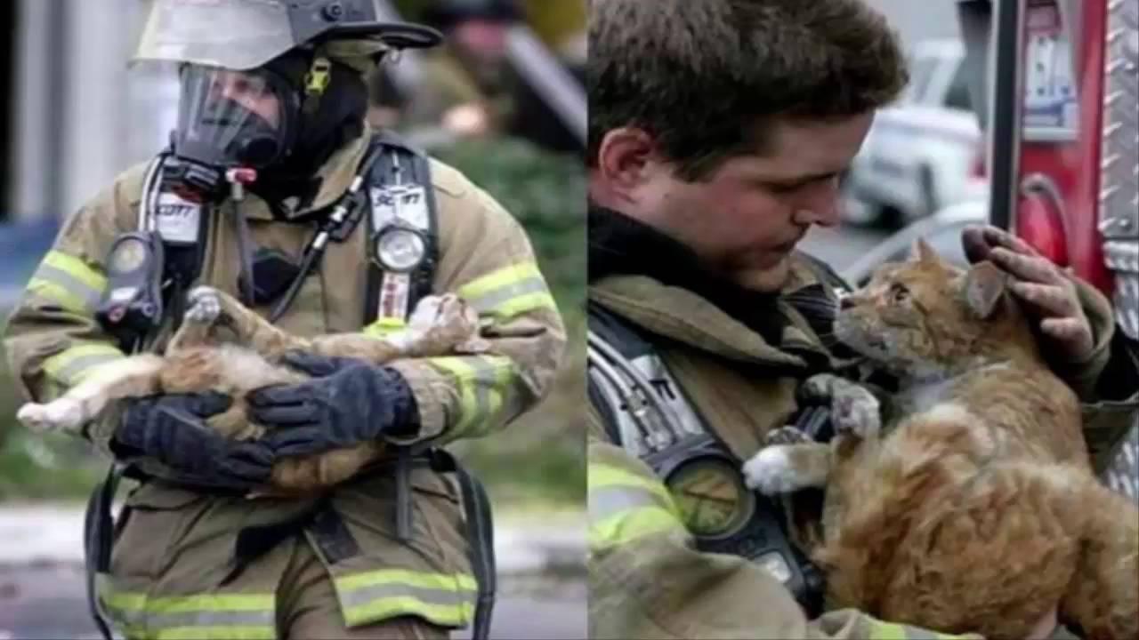 The Firefighter Hero