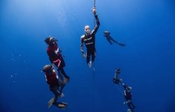 William Trubridge - The Ultimate Freediver