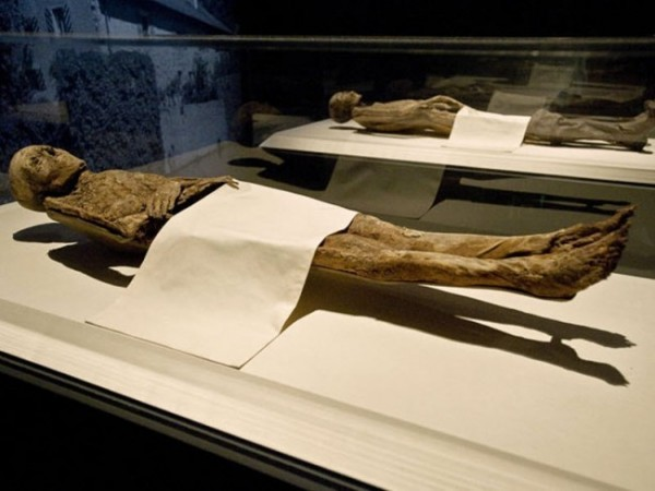 The Cocaine Mummies