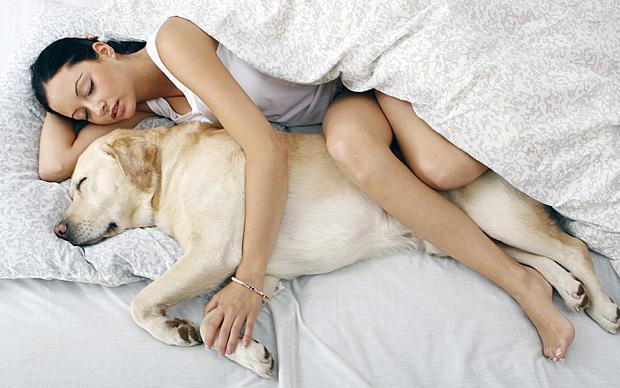 Why Do We Need Sleep