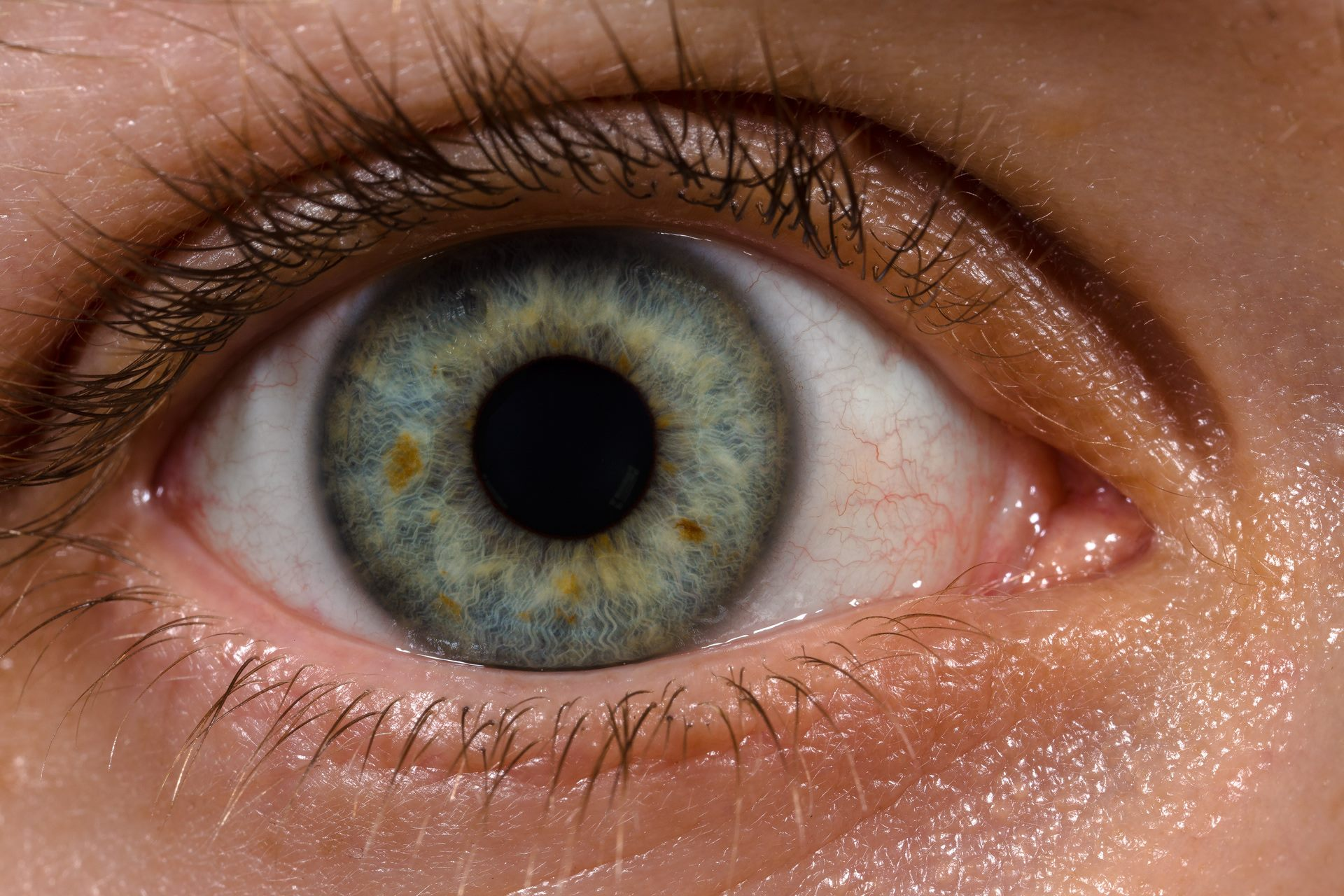 The Human Eye Can Distinguish An Incredible Range Of Colors