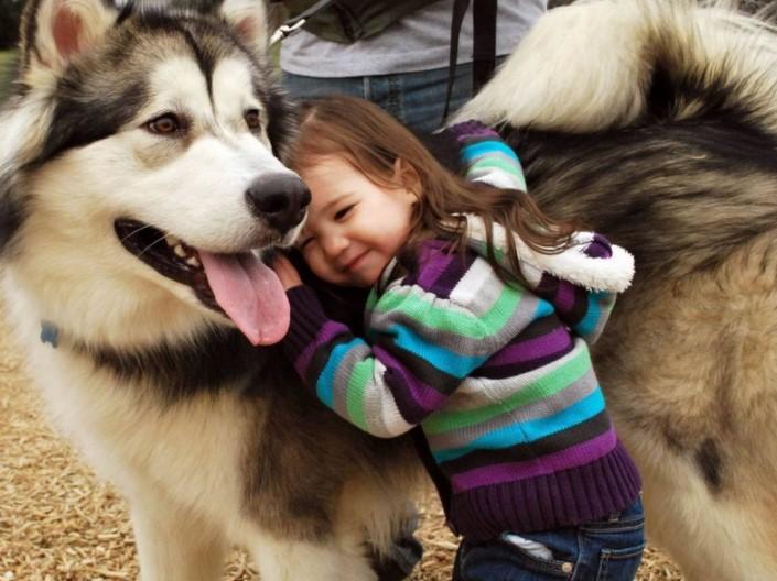 1 Dog Year Is Like 7 Human Years