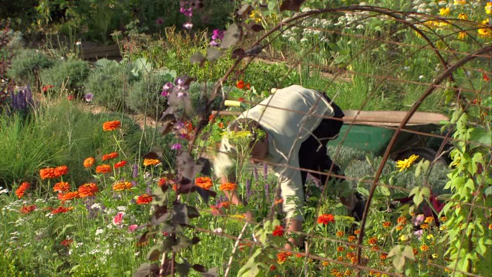 Gardening Keeps Us Going