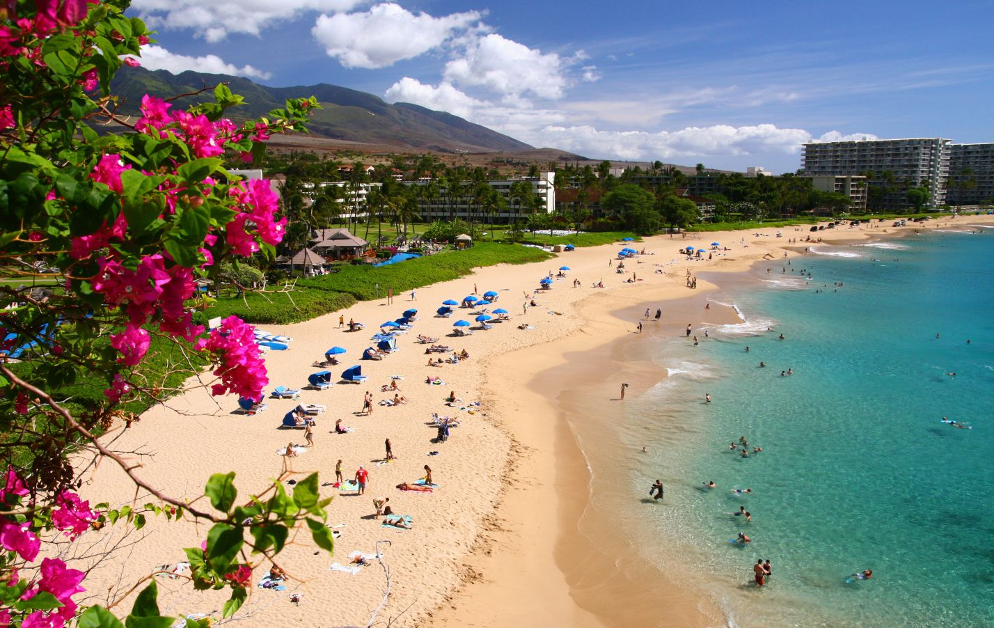 The Stunning Beaches Of Maui